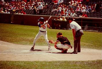 Bill Buckner at Wrigley Field in '81 during a doubleheader sweep by the Cubs over the Giants. Source: Wikipedia Commons