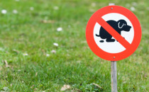 Dog poo sign