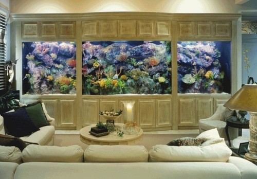 LandmarkCustomHomes-Living_Wall_Aquarium