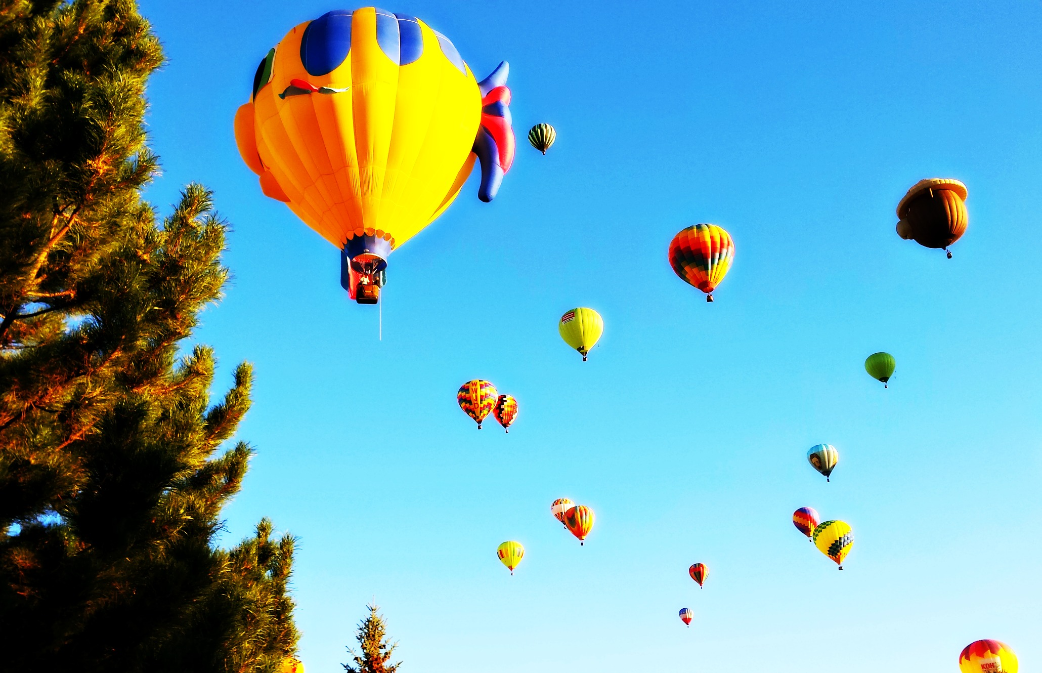 The Great Reno Balloon Race. Source: Shaunta Grimes of Going Reno