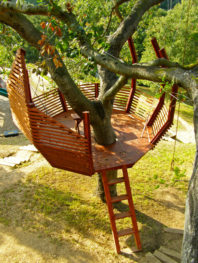 8 Tips For Building Your Own Backyard Treehouse Zillow
