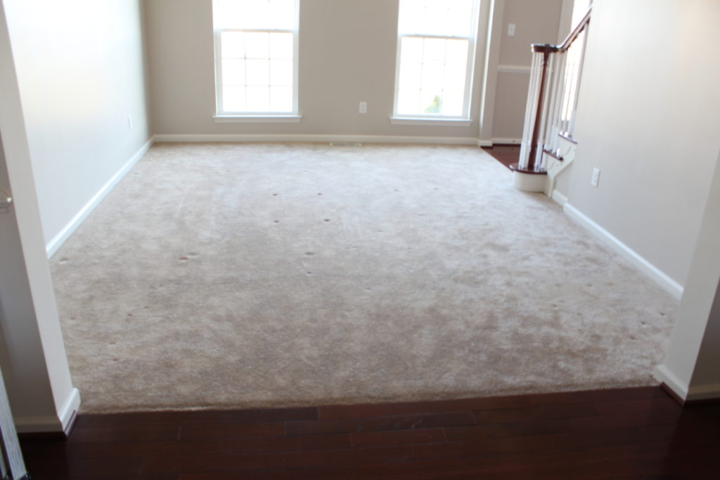How Much Does New Carpet Cost For One Room - Carpet Vidalondon