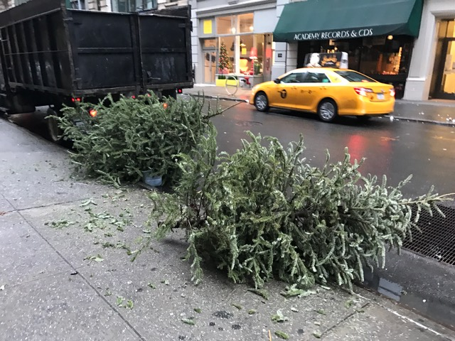Guide To Christmas Tree Disposal In NYC