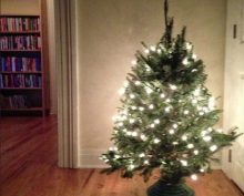 apartment-christmas-tree